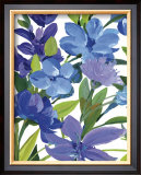 Periwinkle Border Beauty Posters by Martha Collins