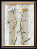 Daisies Poster by Valerie Roy