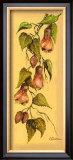 Flores Colgantes II Prints by L. Romero