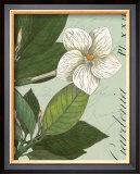 Botanique Bleu III Poster