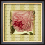 Rose and Romance II Art by Pela Design