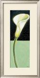 White Lily Prints by Chantal Godbout