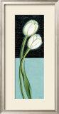 White Tulip Art by Chantal Godbout