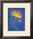 Carnation Framed Giclee Print by Marcella Rose