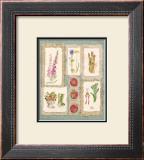 Gardening Pleasures IV Poster by Gillian Fullard