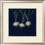 Chalkboard Veggies IV Print by Sara Anderson