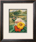 Hawaiian Blessings Framed Giclee Print