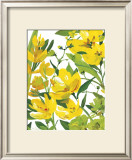 Yellow Border Beauty Posters by Martha Collins