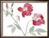 Roses Posters by Aurore De La Morinerie