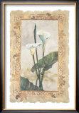 Calla Lily Prints by George Caso