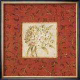 Agapanthus Floret Print by Lauren Hamilton