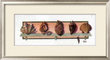 Collection of Shells II Prints by Peggy Jo Ackley
