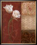 Tulip Grace Posters by  Nan