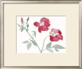 Roses Prints by Aurore De La Morinerie