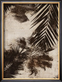 Palms I Prints by J.b. Hall