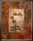 Orchids in Sepia I Posters by  Nan