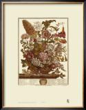 Twelve Months of Flowers, 1730, August Prints by Robert Furber