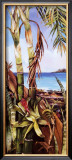 Palms and Bromeliads Prints by Deborah Thompson