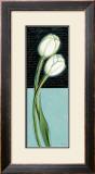 White Tulip Prints by Chantal Godbout