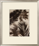 Palms II Prints by J.b. Hall