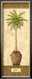 Botanical Palm III Prints by Charlene Audrey