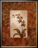 Orchids in Sepia II Prints by  Nan