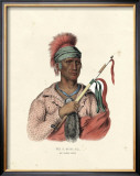 An Ioway Chief Posters by  McKenney & Hall
