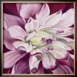 Pink Dahlia Prints by Beth Winslow