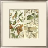 Botanical Quadrant II Posters