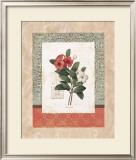 Pervenche Prints by Carol Robinson