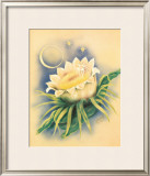 Night Blooming Cereus Framed Giclee Print by Ted Mundorff