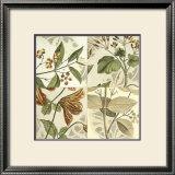 Botanical Quadrant II Print