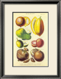 History of the Vegetable Kingdom I Prints by William Rhind