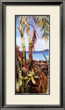Palms and Bromeliads Poster by Deborah Thompson