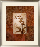 Orchids in Sepia II Poster by  Nan