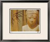 In The Zen II Limited Edition Framed Print by M.J. Lew
