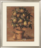 Pear Tree Print by Joaquin Moragues