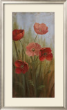 Poppy Morning Glory I Art by  Nan