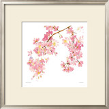 Pink Blossom Prints by Summer Thornton