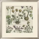Delicate Garden I Posters