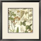 Botanical Quadrant I Prints