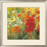 Oriental Poppy Field II Prints by Carol Rowan