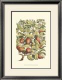 Apple Tree Branch Prints by Henri Du Monceau