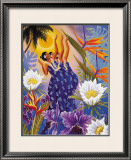 The Blossoms are Opening Framed Giclee Print by Warren Rapozo