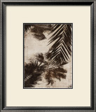 Palms I Posters by J.b. Hall