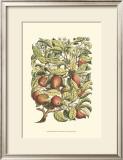 Apple Tree Branch Art by Henri Du Monceau