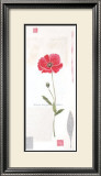 Cotton Poppy Prints by Catherine Denolly