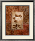 Orchids in Sepia I Prints by  Nan