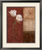 Tulip Grace Prints by  Nan