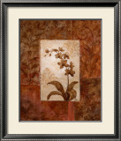 Orchids in Sepia II Posters by  Nan